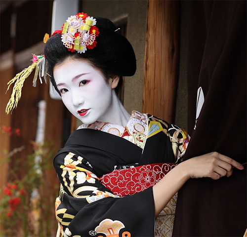 Geisha, Memoirs of A (Biscuit Post)